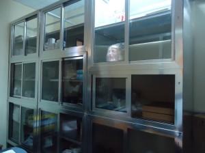 nursing equipment store room